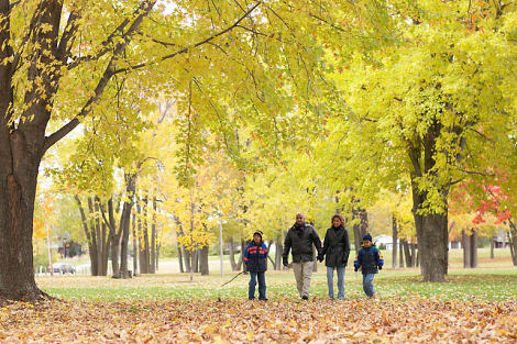 Parenting children: A walk in the park?